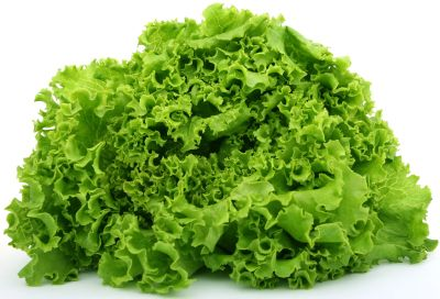 dimagrire con l'insalata