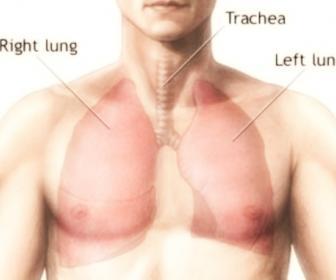 Quello che può essere il fondo di uno stomaco e una vita fa male alluomo