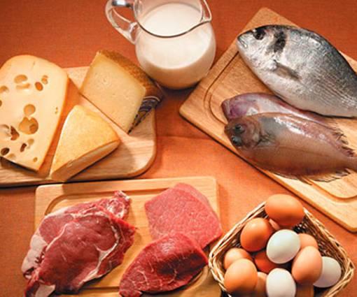 dieta proteica pro e contro