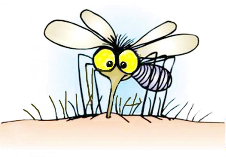 tc3a8-e-zanzare