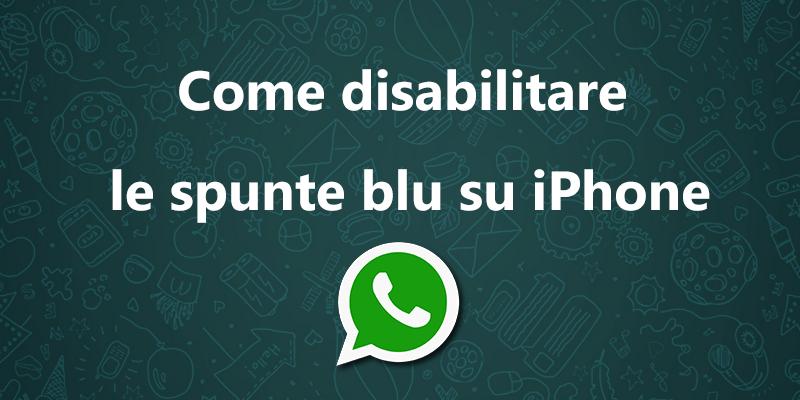 Disabilitare le spunte blu su Whatsapp è possibile, leggi come