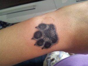 tatuaggi-per-chi-ama-gli-animali