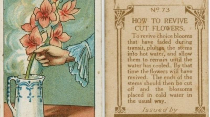 Trucchi di più di 100 anni fa che vi torneranno utilissimi nella vita di tutti i giorni