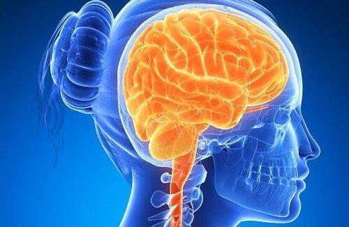 10 preziosi consigli per avere un cervello sano