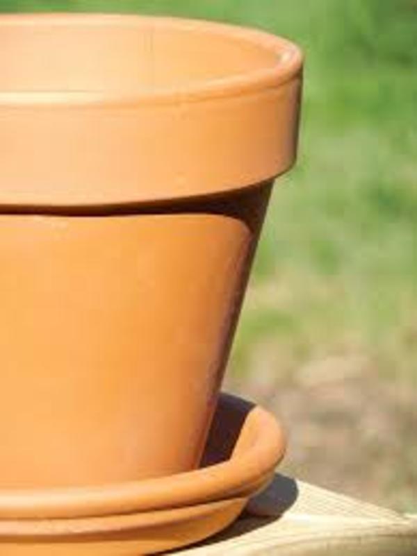vaso da giardino pulito con aceto