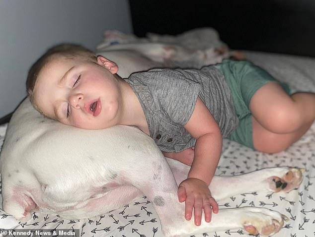 Il bambino viene ripreso dalla telecamera mentre esce furtivamente dal letto per coccolarsi con ...